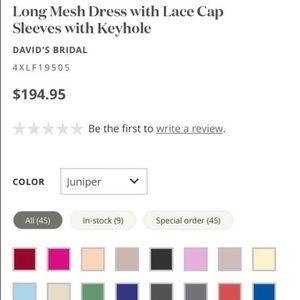 David's bridal long mesh dress with lace cap